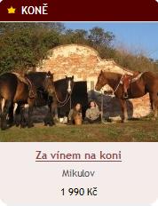Za vínek do Mikulova na koni